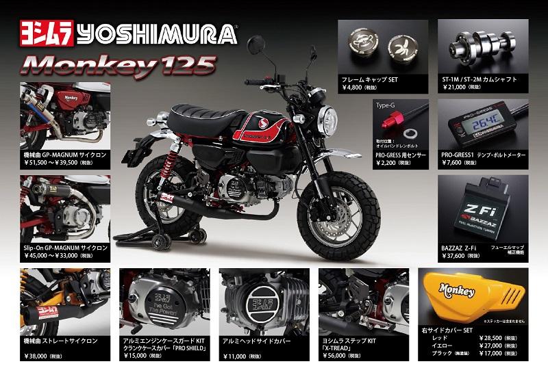 Monkey125_800